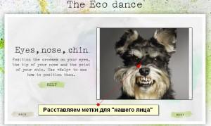 ecodance простановка меток лица
