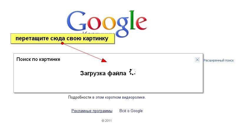 Телефон адрес база данных, номера сотовых телефонов справочник в казахстане